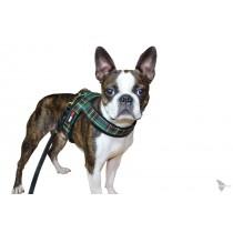saardogs-chow-chow-geschirr-stoff-schotte-grün-bulldogge-fleecepolsterung