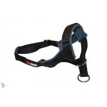 saardogs-kopfhalfter-schwarz-anthrazit-20mm-breite
