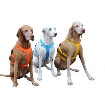 saardogs-sicherheitsgeschirre-musterhunde