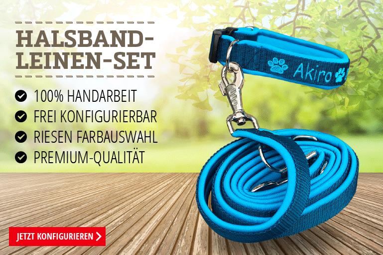 Halsband-Leinen-Set
